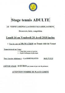 stage tennis de paques adultes du 16 au 20 avril 2018